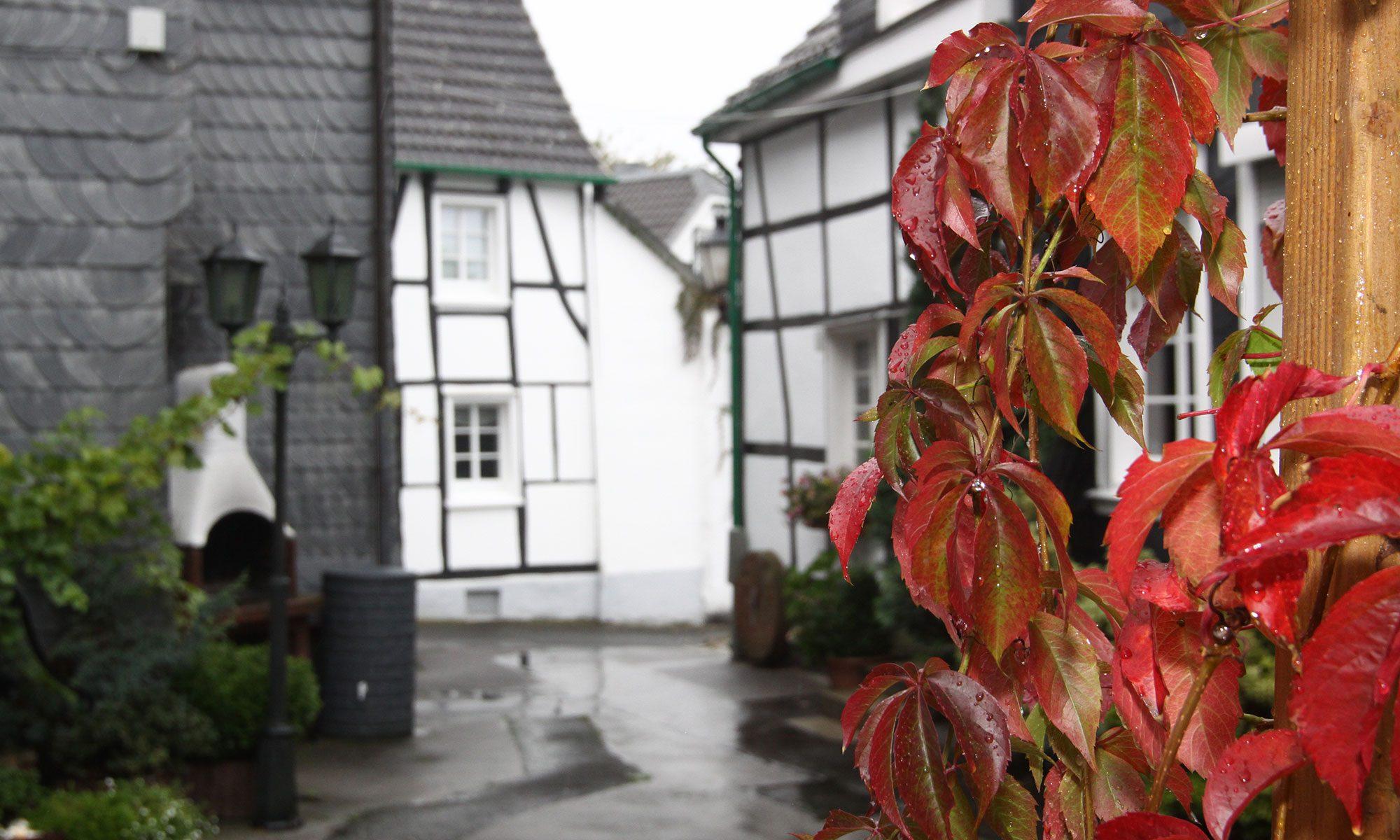 Cronenberger Heimat- und Bürgerverein